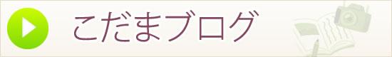こだまブログ